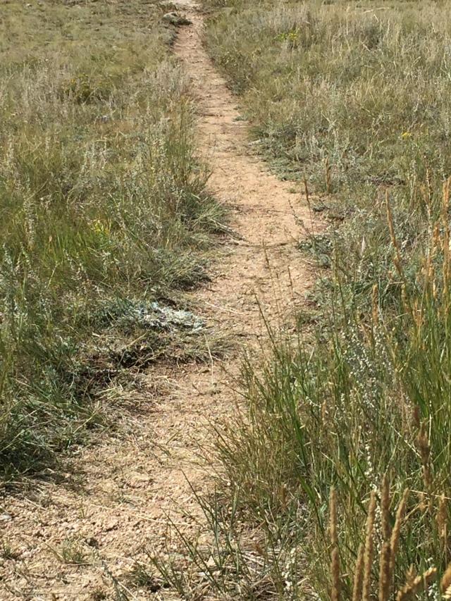 worn-path